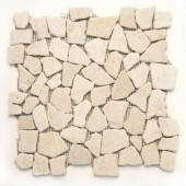 Solistone Indonesian Jakarta Moon 12 in. x 12 in. x 6.35mm Natural Stone Pebble Floor and Wall Tile (10 sq. ft. / case)