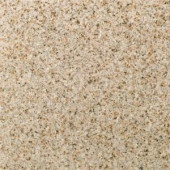 Daltile Golden Garnet 12 in. x 12 in. Natural Stone Floor and Wall Tile (10 sq. ft. / case)