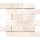 MS International Bologna Chiaro 3 in. x 6 in. Travertine Floor & Wall Tile