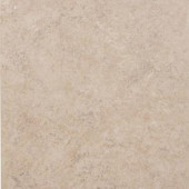 Americer Amazon Sand 16 in. x 16 in. Ceramic Floor and Wall Tile