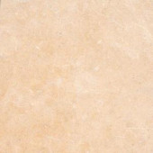 MS International 12 in. x 12 in. Princess Gold Limestone Floor and Wall Tile